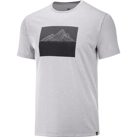 Salomon Agile Graphic T-shirt Heren, alloy/heather